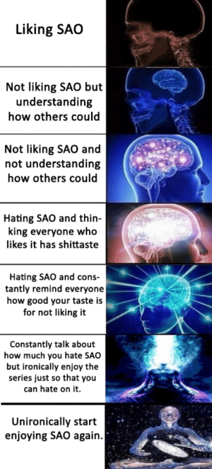 Anime, Good, and Understanding: Liking SAO  Not liking SAO but  understanding  how others could  Not liking SAO and  not understanding  how others could  Hating SAO and thin-  king everyone who  likes it has shittaste  Hating SAO and cons-  tantly remind everyone  how good your taste is  for not liking it  Constantly talk about  how much you hate SAO  but ironically enjoy the  series just so that you  can hate on it.  Unironically start  enjoying SAO again. That's what I call a character arc