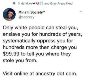 White People, Ancestry, and White: lil darkkkoand Gray Areas liked  Mina II SocietyM  @odotkay  Only white people can steal you,  enslave you for hundreds of years,  systematically oppress you for  hundreds more then charge you  $99.99 to tell you where they  stole you from.  Visit online at ancestry dot com. Woke
