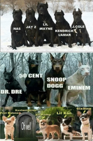50 Cent, Dr. Dre, and Eminem: LIL  JAY Z WAYNE  J.COLE  KENDRICK  LAMAR  50 CENT  SNOOP  DOGG EMINEM  DR. DRE  Gix9ine  Xxxtentacion  Lil Xan  Post Malone  LiI Pump  Ii Updated for accuracy