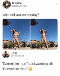 """Lil Mama, Memes, and Today: lil mama  @noturhynaa  what did you learn today?  G@WILL ENT  @icotheartizt  """"Dammit im mad"""" backwards is still  """"Dammit im mad"""" Mind blown"""