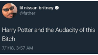 harry potter and the audacity of this bitch