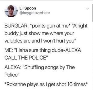 "call the police: Lil Spoon  @heygetoverhere  BURGLAR: *points gun at me* ""Alright  buddy just show me where your  valubles are and I won't hurt you""  ME: ""Haha sure thing dude-ALEXA  CALL THE POLICE""  ALEXA: ""Shuffling songs by The  Police""  ""Roxanne plays as I get shot 16 times*"