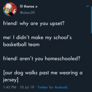 Android, Basketball, and Twitter: lil thanos x  @ohen39  friend: why  are you upset?  me: I didn't make my school's  basketball team  friend: aren't you homeschooled?  [our dog walks past  jersey]  me wearing a  1:42 PM 10 Jul 19 Twitter for Android Well that sucks
