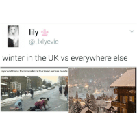 Memes, 🤖, and Crawl: lily  LIxlyevie  winter in the UK vs everywhere else  Icy conditions force walkers to crawl across roads  BBC  HOTE LOL she's not lying. I'm seeing real winter wonderlands on my explore page but here in the UK, we have Dodgy Dave moonwalking on icy puddles with a flat Carlsberg in his hand 😒😂😂😂