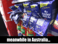 Memes, Australia, and Limited: Limited  Edition  Limate  mited  tAttion  DA RY  MILK  Bar  Cut  Cuf  meanwhile in Australia..