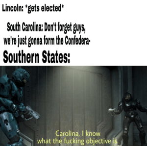 E: Lincoln: 'gets elected*  South Carolina: Dont torget guys,  we'rejust gonna form the Confedera  Southern States:  Carolina, I know  what the fucking objective E