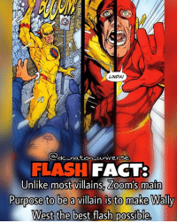 Batman, Memes, and Superman: LINDA!  do nation universe  FLASH  FACT:  Unlike most villains, Zoom's main  Purpose to be a villain is to make Wally  West the best flash possible, dc dccomics dceu dcu dcrebirth dcnation dcextendeduniverse batman superman manofsteel thedarkknight wonderwoman justiceleague cyborg aquaman martianmanhunter greenlantern theflash greenarrow suicidesquad thejoker harleyquinn comics injusticegodsamongus