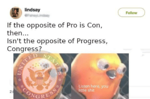 Listen here by schrodin9ers_cat MORE MEMES: lindsay  Follow  If the opposite of Pro is Con,  then...  Isn't the opposite of Progress,  Congress?  TED  Listen here, you  little shit  SONGRESS  2:  STATES Listen here by schrodin9ers_cat MORE MEMES