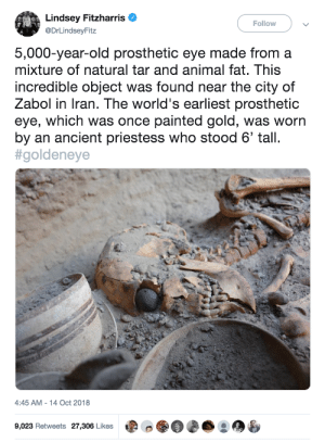 twilightsparklesharem: And when a six-foot tall Persian priestess with a fucking GOLD EYE speaks, you know you damn well listen to what she has to say.: Lindsey Fitzharris  Follow  @DrLindseyFitz  5,000-year-old prosthetic eye made from a  mixture of natural tar and animal fat. This  incredible object was found near the city of  Zabol in Iran. The world's earliest prosthetic  eye, which was once painted gold, was worn  by an ancient priestess who stood 6' tall.  #goldeneye  4:45 AM - 14 Oct 2018  9,023 Retweets 27,306 Likes twilightsparklesharem: And when a six-foot tall Persian priestess with a fucking GOLD EYE speaks, you know you damn well listen to what she has to say.