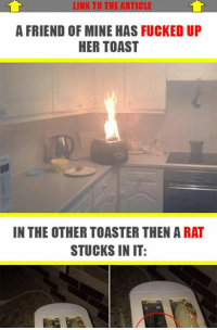 Link, Toast, and German (Language): LINK TO THE ARTICE  A FRIEND OF MINE HAS FUCKED UP  HER TOAST  IN THE OTHER TOASTER THEN A RAT  STUCKS IN IT: 14 People Who Ruined Their Toast So Much That They Ask Themselves A Lot. Read the full story here 👉 https://1jux.net/646370/70232