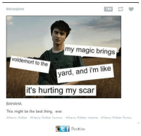 harry potter meme: linksey love  my magic brings  voldemort to the  yard, and i'm like  it's hurting my scar  BAHAHA.  This might be the best thing, ever.  Harry Potter #Harry Potter humor Harry Potter meme #Harry Potter funny  tf Postize