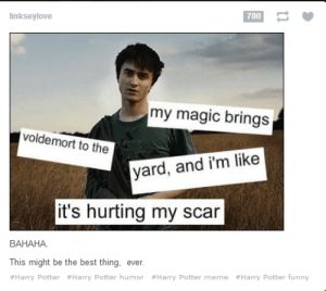 Yard Attractorus!omg-humor.tumblr.com: linkseylove  780  my magic brings  voldemort to the  yard, and i'm like  it's hurting my scar  BAHAHA  This might be the best thing, ever  #Harry Potter #Harry Potter humor #Harry Potter meme #Harry Potter funny Yard Attractorus!omg-humor.tumblr.com