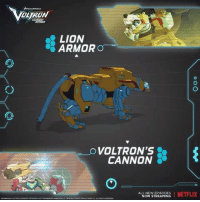 Memes, Netflix, and Lion: LION  ARMOR  O  VOLTRON'S  CANNON  ALL NEWEPISODES  I NETFLIX  NOW STREAMING Superior armor. Powerful claws. Leg. Check out the YellowLion !
