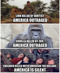 America, Black Lives Matter, and Memes: LION KILLED BY DENTIST  AMERICA OUTRAGED  GORILLA KILLED BY100  AMERICAOUTRAGED  THEFREETHOUGHTPROJECTCOM  CHILDRENKILLED WITHAMERICAN TAX DOLLARS  AMERICAIS SILENT So true mane. We need to end our wars, now... 😳 ––––––––––––––––––––––––––– 👍🏻 Turn On Post Notifications! 📝 Register To Vote 📢 Raise Awareness For Our Revolution 💰 Donate to Bernie ––––––––––––––––––––––––––– FeelTheBern BernieSanders Bernie2016 Hillary2016 Obama HillaryClinton President BernieSanders2016 election2016 trump2016 Vegan GoVegan BlackLivesMatter SanDiego Vote California Cali BernieOrBUST CaPrimary WhichHillary NeverHillary HillaryForPrison Losangeles DropOutHillary Fresno Sacramento oakland sanfrancisco Visalia –––––––––––––––––––––––––––