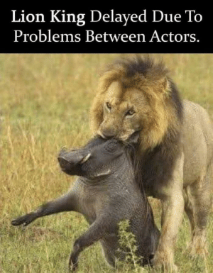 Dank, Memes, and News: Lion King Delayed Due To  Problems Between Actors. BREAKING NEWS! by mootjuggler MORE MEMES
