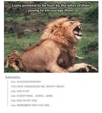 Dad, God, and Oh My God: Lions pretend to be hurt by thebites of their  young toencourage them.  thefemalefury  Lion: AGGGGGGGHHHHH  YOU HAVE VANQUISHED ME, MIGHTY BEAST  Cub: DAD STOP  Lion: EVERYTHING...GOING...DARK  Cub: DAD OH MY GOD  Lion: REMEMBER WHO YOU ARE.. <p>Lions Are Really Good Fathers.</p>