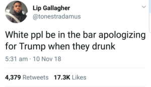 They really do be by Atheistsomalipirate MORE MEMES: Lip Gallagher  @tonestradamus  White ppl be in the bar apologizing  for Trump when they drunk  5:31 am 10 Nov 18  4,379 Retweets 17.3K Likes They really do be by Atheistsomalipirate MORE MEMES