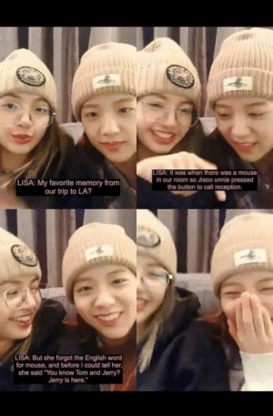 """Reddit, Mouse, and Tom and Jerry: LISA: It was when there was a mouse  in our room so Jisoo unnie pressed  the button to call reception  LISA: My favorite memory from  our trip to LA?  LISA: But she forgot the English word  for mouse, and before I could tell her  she said """"You know Tom and Jerry?  Jerry is here. I hope this happened"""