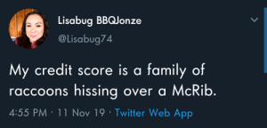 Family, Twitter, and Credit Score: Lisabug BBQJonze  @Lisabug74  My credit score is a family of  raccoons hissing over a McRib.  4:55 PM 11 Nov 19 Twitter Web App meirl