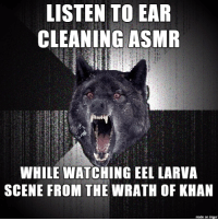 LISTEN TO EAR  CLEANING ASMR  WHILE WATCHINGEEL LARVA  SCENE FROM THE  WRATH OF KHAN  made on imgur A highly recommended relaxation technique