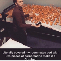 Funny, Girl Memes, and Make: Literally covered my roommates bed with  324 pieces of cornbread to make it a  Cornbed Neat
