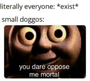 Be Like, Dare, and You: literally everyone: *exist*  small doggos:  you dare oppose  me mortal It do be like that