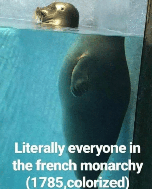 French monarchy (1785): Literally everyone in  the french monarchy  (1785.colorized) French monarchy (1785)