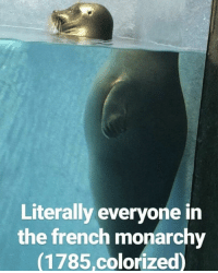 Revolution, French, and Monarchy: Literally everyone in  the french monarchy  (1785,colorized) REVOLUTION