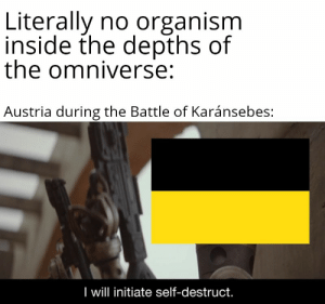 Oh.: Literally no organism  inside the depths of  the omniverse:  Austria during the Battle of Karánsebes:  I will initiate self-destruct. Oh.