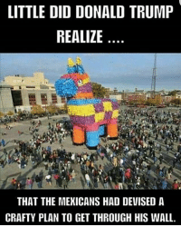 Donald Trump, Memes, and Trump: LITTLE DID DONALD TRUMP  REALIZE  THAT THE MEKICANS HAD DEVISED A  CRAFTY PLAN TO GET THROUGH HIS WALL.
