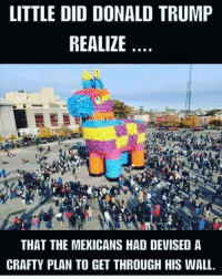 Donald Trump, Trump, and Crafty: LITTLE DID DONALD TRUMP  REALIZE  THAT THE MEXICANS HAD DEVISED A  CRAFTY PLAN TO GET THROUGH HIS WALL