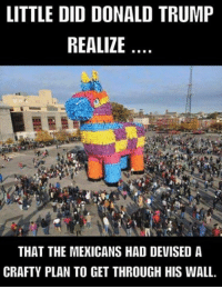 LITTLE DID DONALD TRUMP  REALIZE  THAT THE MEXICANS HAD DEVISED A  CRAFTY PLAN TO GET THROUGH HIS WALL. LOL. That Donald isn't to smart. CrazyAsAHootyOwl!