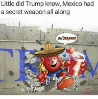 Little did Trump know, Mexico had  a secret weapon all along  OH YEAHHH!  osean-spea We've got the Kool-Aid Man on our side 😤😤