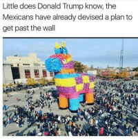 Trojan Piñata - FOLLOW @super.weenie.hut.juniors FOR MORE CONTENT: Little does Donald Trump know, the  Mexicans have already devised a plan to  get past the wall Trojan Piñata - FOLLOW @super.weenie.hut.juniors FOR MORE CONTENT