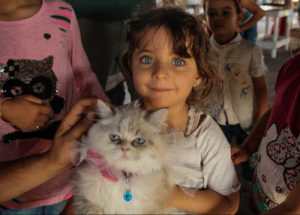 Little girl with her cat in a pet exhibition in Gaza: Little girl with her cat in a pet exhibition in Gaza