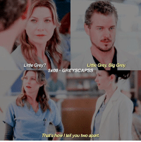 Hello, Memes, and Grey: Little Grey?  Little Grey Big Grey.  5x08 GREY SCAPSS  That's howltell you two apart. greysanatomy | HELLO I MISS MARK AND LEXIE OK BYE