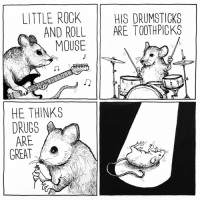 Cute Animals, Drugs, and Memes: LITTLE ROCK  HIS DRUMSTICKS  AND ROLL  ARE TOOTH PICKS  MOUSE  HE THINKS  DRUGS  ARE  GREAT  V r everybody loves rock & roll mouse music cute animals guitar