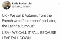 "'Merica. We're so sophisticated.: Little Rocket Jinm  @Turbo_Jimmy  UK - We call it Autumn, from the  French word ""autompne"" and later,  the Latin ""autumnus""  USA WE CALL IT FALL BECAUSE  LEAF FALL DOWN 'Merica. We're so sophisticated."