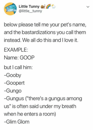"Love, Memes, and Pets: Little Tunny  @little_tunny  below please tell me your pet's name,  and the bastardizations you call them  instead. We all do this and I love it.  EXAMPLE:  Name: GOOP  but I call him:  -Gooby  -Goopert  -Gungo  -Gungus (""there's a gungus among  us"" is often said under my breath  when he entersa room)  -Glim Glom"