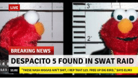 "Dank, Elmo, and Meme: LIVE  2'  BREAKING NEWS  DESPACITO 5 FOUND IN SWAT RAID  LES 11:02  ""THESE NASA NIGGAS AIN'T SHIT, I REP THAT 123. FREE UP BIG BIRD,"" SAYS ELMO <p>🅱reaking News via /r/dank_meme <a href=""https://ift.tt/2GomR1z"">https://ift.tt/2GomR1z</a></p>"