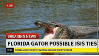 """The terror suspect, a dark skinned, scary looking fellow, goes by the name """"Ali"""" gator... leading authorities to believe he must be of Middle Eastern descent.   President Obama responded by predator drone bombing Yemen and Congress is now debating whether Americans should be allowed to own lagoons.: LIVE  BREAKING NEWS  FLORIDA GATOR POSSIBLE ISIS TIES  17:01  HOMELAND SECURITY TIGHTENS AROUND DISNEY RESORT The terror suspect, a dark skinned, scary looking fellow, goes by the name """"Ali"""" gator... leading authorities to believe he must be of Middle Eastern descent.   President Obama responded by predator drone bombing Yemen and Congress is now debating whether Americans should be allowed to own lagoons."""