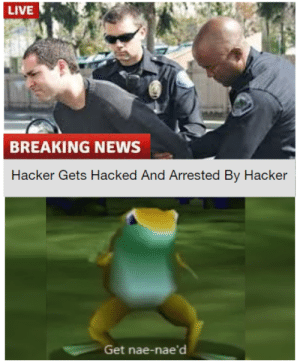 Funny, News, and Reddit: LIVE  BREAKING NEWS  Hacker Gets Hacked And Arrested By Hacker  Get nae-nae'd Funny, Did Laugh