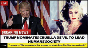 "Dogs, News, and Breaking News: LIVE  BREAKING NEWS  ihat  TRUMPNOMINATES CRUELLA DE VILTO LEAD  HUMANE SOCIETY  12:59  Trumpsays ""She's somebody that knows a lotabout dogs. She'll do tremendously"""