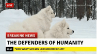 """Shoobies doin a protect ~Obaasan Doge: LIVE  BREAKING NEWS  THE DEFENDERS OF HUMANITY  16:40  """"WOOF WOOF"""" SAYS NEW UN PEACEKEEPER FLUFFY Shoobies doin a protect ~Obaasan Doge"""