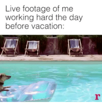 Vacation: Live footage of me  working hard the day  before vacation: