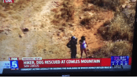 Memes, News, and Sony: LIVE  FOX BREAKING NEWS  BIG BAY  SOON  4 2 43 35  HIKER,DOG RESCUED AT COWLES MOUNTAIN  5:16  70°  EWSD ERNMENT ACTED LEGALLY IN SEIZING THE BUILDING IN WHICH ADOLF HITLER WAS BO PAVING  EAGLE  SONY Ohmygod 😂😂 https://t.co/N4aXOlvQRm