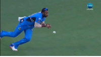 Memes, Hurricane, and Match: LIVE FREE Adelaide Strikers vs Hobart Hurricanes, 18th Match  HBH - 91/5 (13) | B Webster - 23*(20) , J Wells - 42*(29)