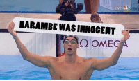 Memes, Michael Phelps, and 🤖: LIVE  HARAMBE WASINNOCENT  Q OMEG MICHAEL PHELPS IS THE HERO AMERICA DESERVES
