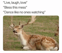 "Humans of Tumblr: ""Live, laugh, love""  ""Bless this mess""  ""Dance like no ones watching'"""