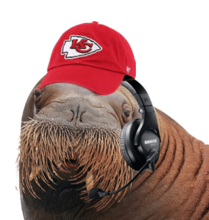 Live look at Andy Reid during the Superbowl: Live look at Andy Reid during the Superbowl